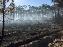 Morning after fire on St. George Island