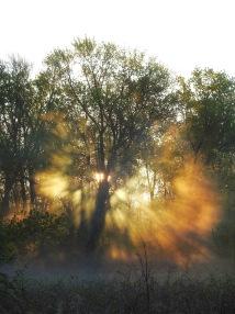 Fannie Stebbins National Wildlife Refuge